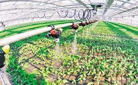 现代农业产业发展趋势及农业传感器盈利模式分析